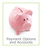 Payment options and accounts